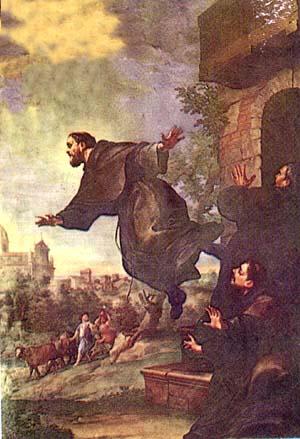 images of stjosephs climbing rose