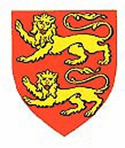 LionShield.jpg - 42177 Bytes